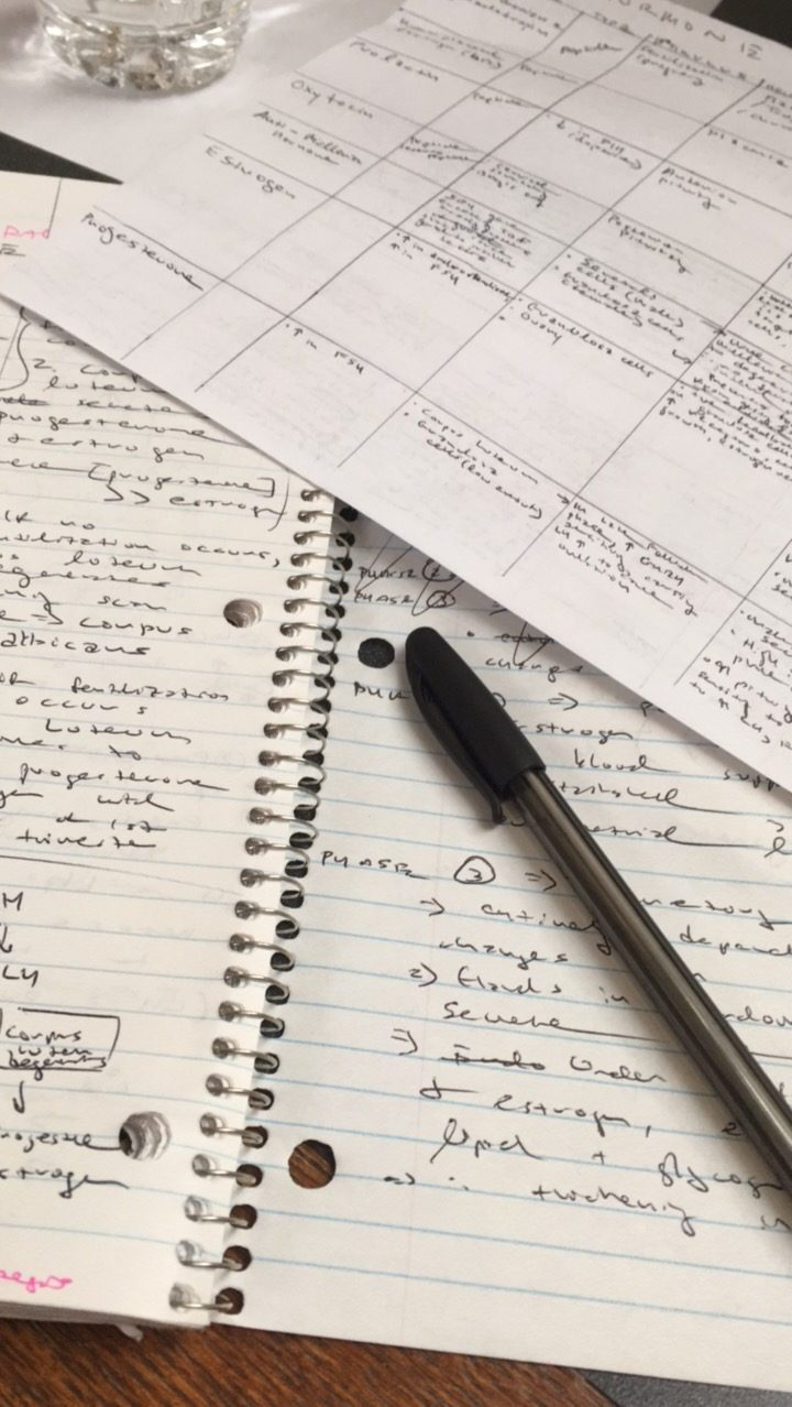 Photo of handwritten notes with black ink, on lined paper
