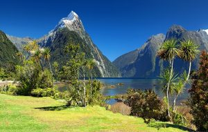 Photo of milford sound volcanos and trees landscape
