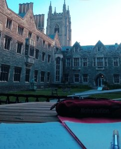 Study set up in Hart house quad