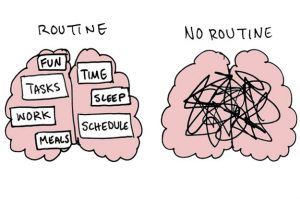 picture of two brains, one with routine, and one without