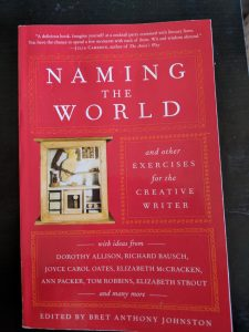 "An image of the book ""Naming the World"""