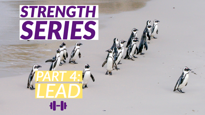 Strength Series - Part 4: Lead banner with a group of penguins in the background