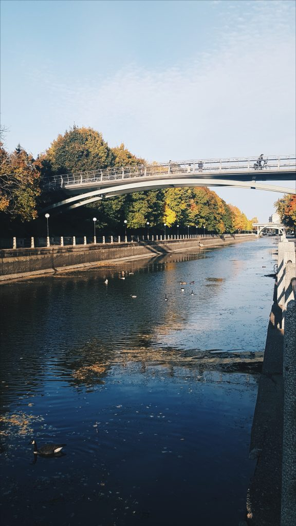 rideau canal bridge and fall coloured leaves