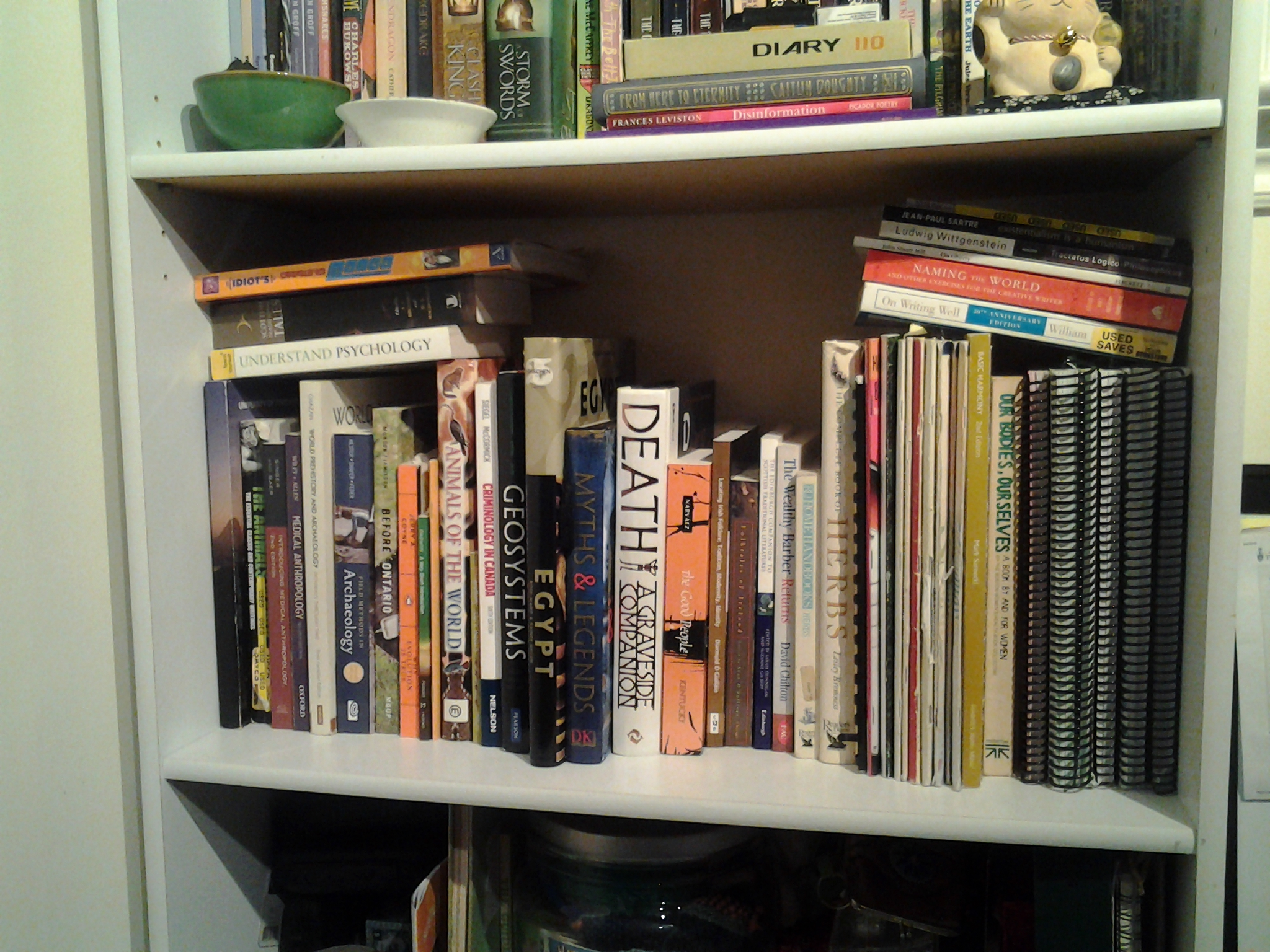 A photo of my bookshelf after the books have been placed back. Caption: returned to the shelf