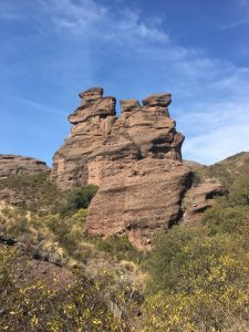 photograph: unusual rock formations, tan-ish in color, blue sky background, yellow flowering brush in foreground