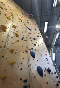 A girl at the top of a tall rock-climbing wall.