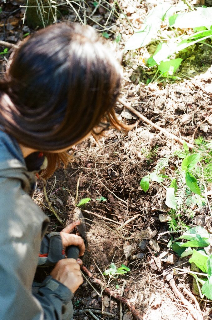A photo of me digging up spruce roots for the birch bark canoe. Caption: Me digging for spruce roots. Photo courtesy of Kristen Bass.