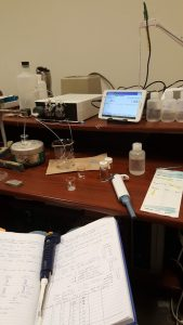 lab set up