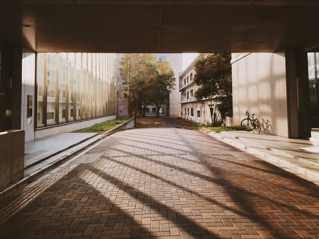 Sunny day on UTokyo campus in the early morning.