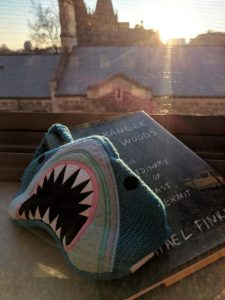 """A picture of a sleep mask with an angry shark design, propped up on the book """"A Stranger in the Woods"""" by Michael Finkel. These items are on a windowsill, through which the sun is shining and there are old buildings."""