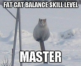 "A fat cat balancing on a pole, with the caption ""fat cat balance skill level: master"""