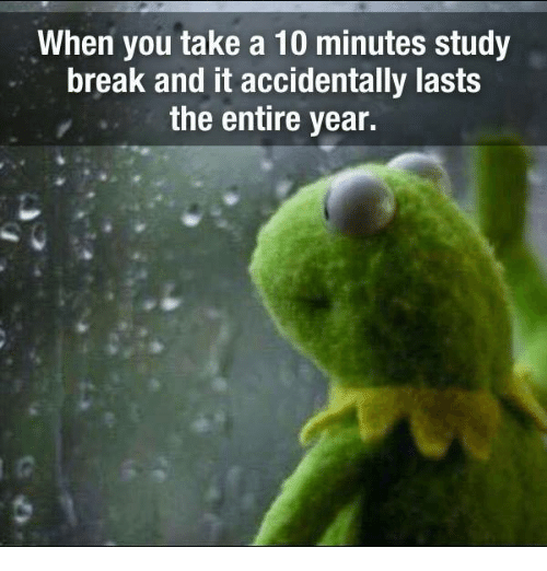 "A kermit the frog mem of him looking out a rainy window, with the caption ""when you take a 10 minute study break and it accidentally lasts the entire year."""