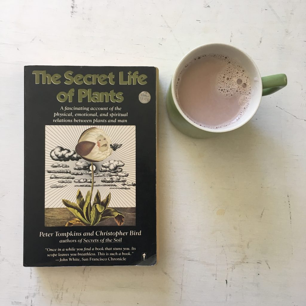 "Front cover of the book ""The secret Life of Plants"" with a mug of hot chocolate beside it."