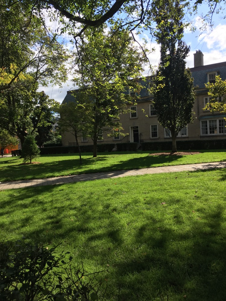 Picture of the UC Quad area