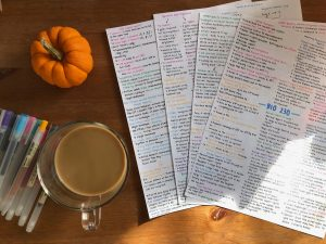 Picture of my BIO 230 notes with a cup of coffee, pens, and a small pumpkin to the side