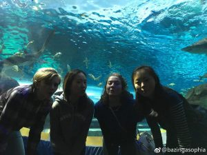 At the aquarium.