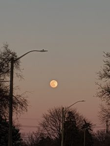 full moon with pink-ish sky