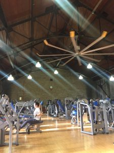 A picture of Hart House gym