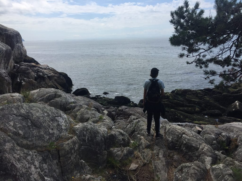 A picture of someone on a rock staring out at the ocean