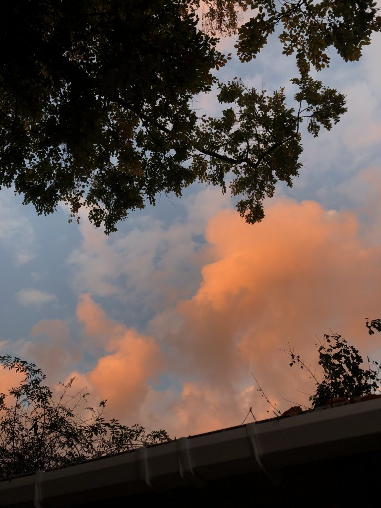 One of the last evening skies of October, and I find going outside and glancing at the sky is relaxing.