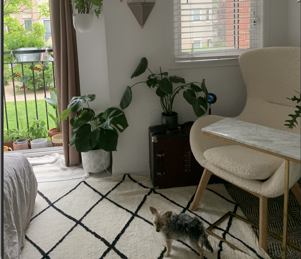 a bedroom with many plants and a fluffy arm chair