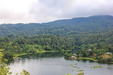 A beautiful, lush landscape of indigenous lands.