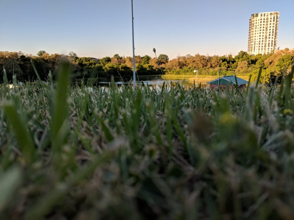 An image of grass, a pond, and a building in the evening sky.