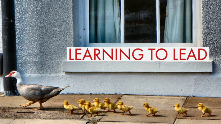 Learning to Lead banner with family of baby ducks following mother duck in the background