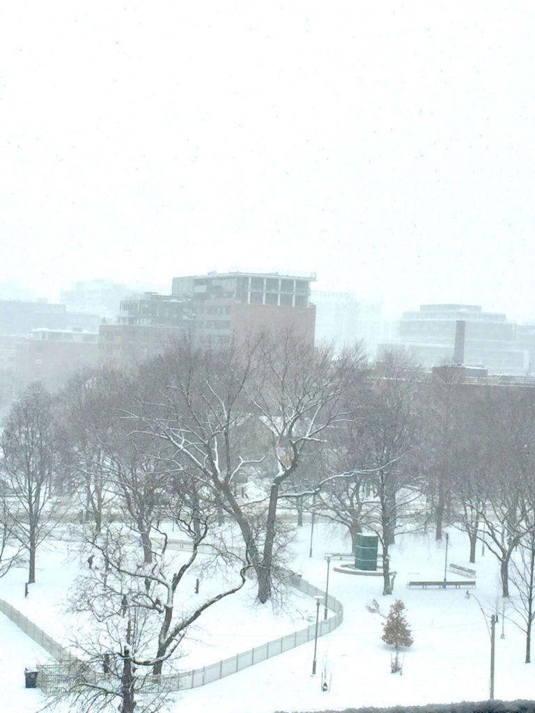 Image of a gray winter sky