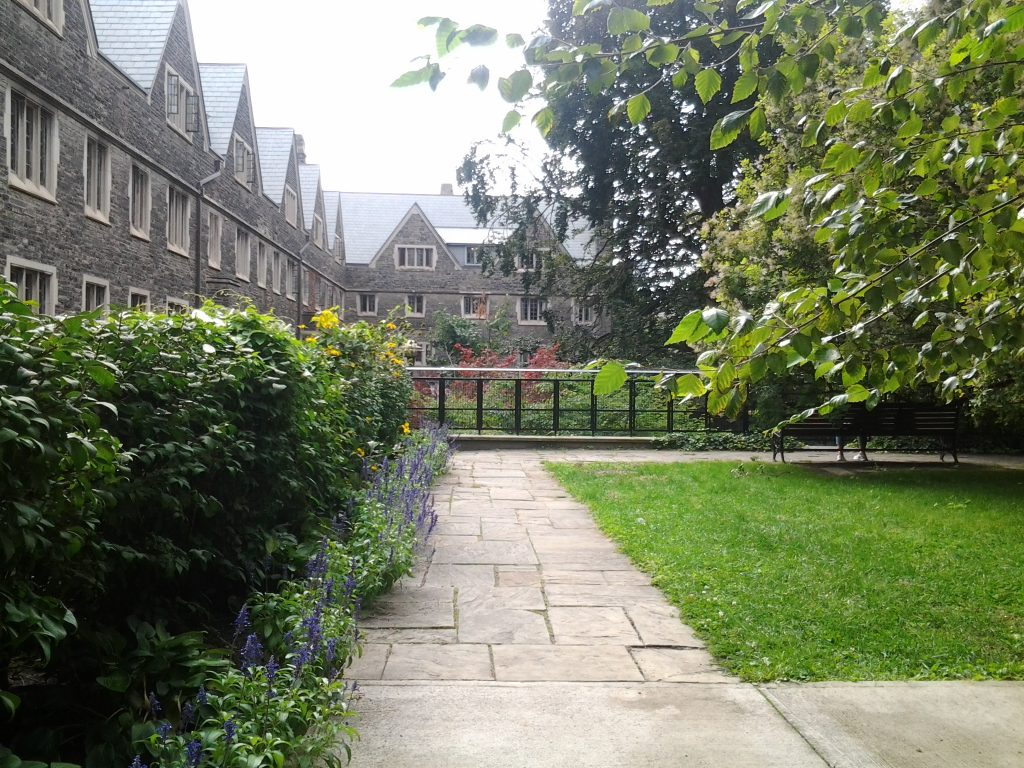 A photo I took of Victoria College during summertime. Caption: Summer on-campus