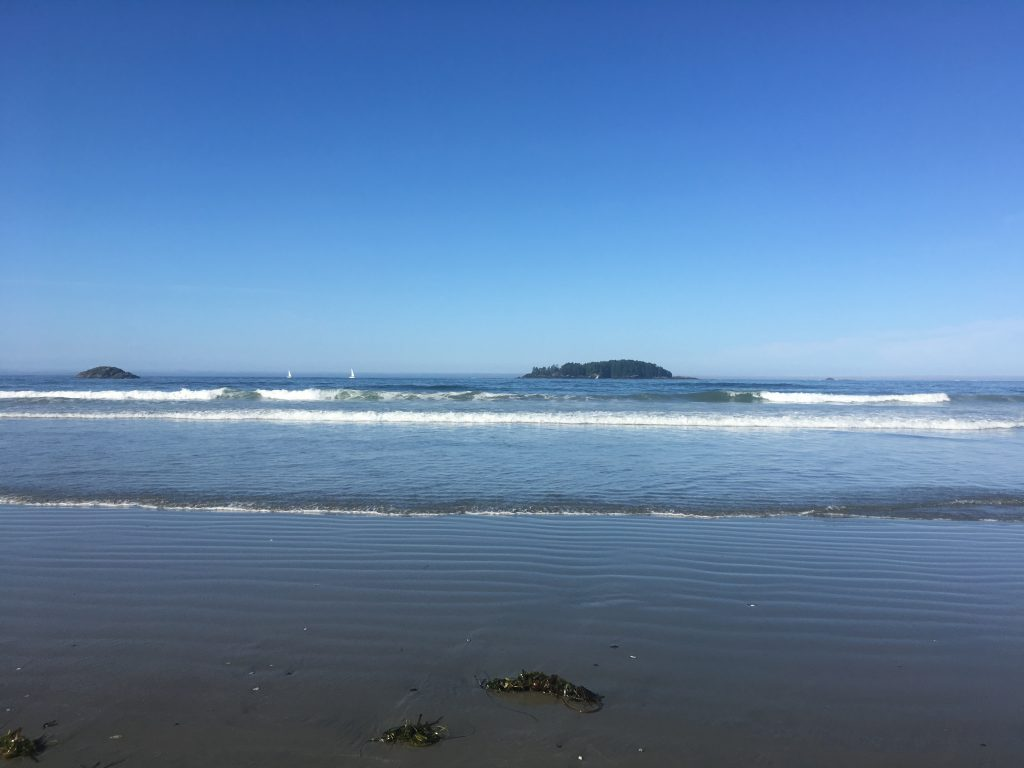 Picture of Tofino beaches and waves