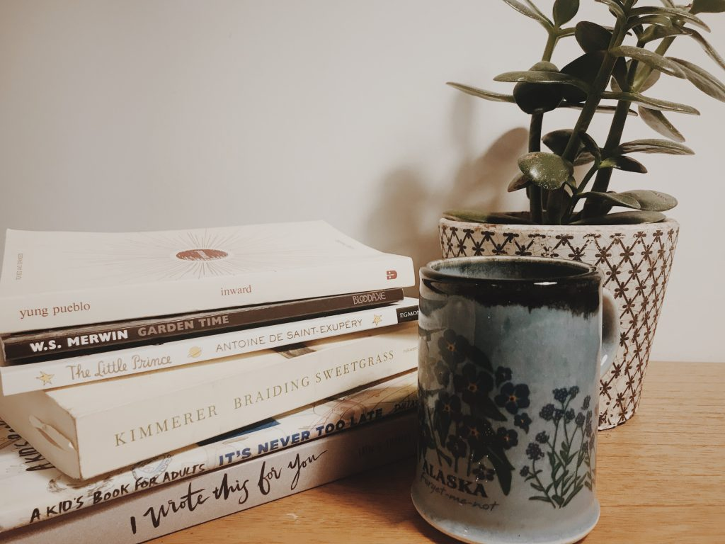 picture of books with mug of tea and jade plant