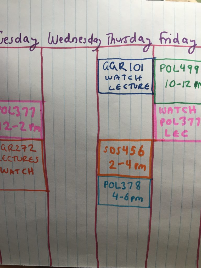 A picture of a schedule representing synchronous and asynchronous lecture times