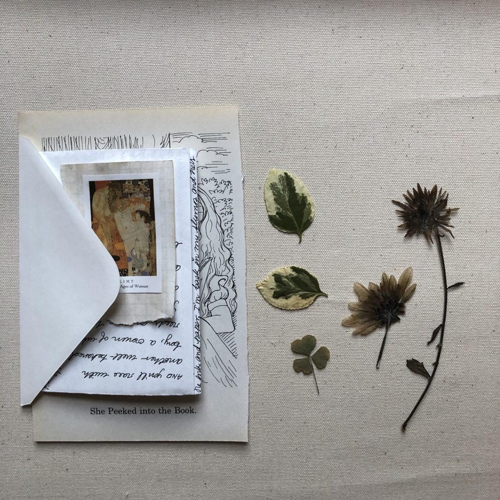 Letter and pressed flowers.