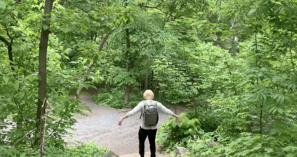 back profile of someonee walking down a wooded trail