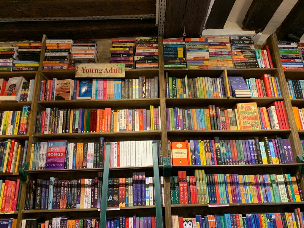 rows of bookshelves filled with books in a Parisian bookstore