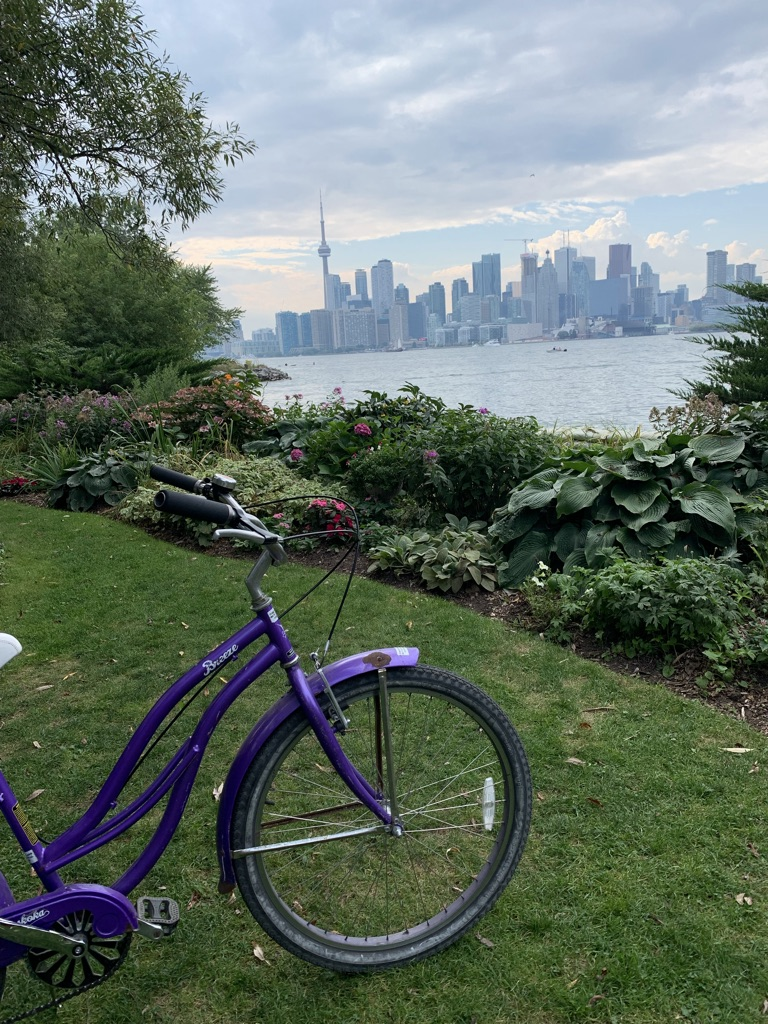 a purple bike and greenery in front of the Toronto skyline and CN tower behind Lake Ontario
